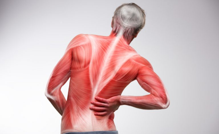 Como acalmar as dores musculares póstreino