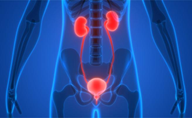 Contínuo estímulo de urinar: o que é?