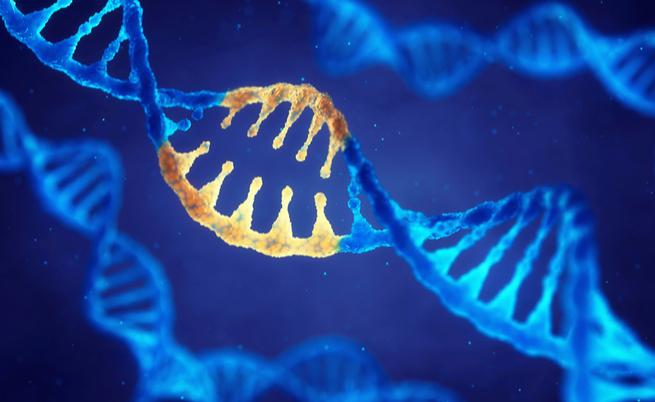 O autismo é hereditária: a causa está nos genes